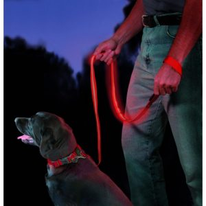 Light-up LED Leash Dog Accessory